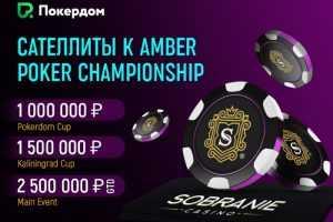 На_Покердом_запустились сателлиты к Amber